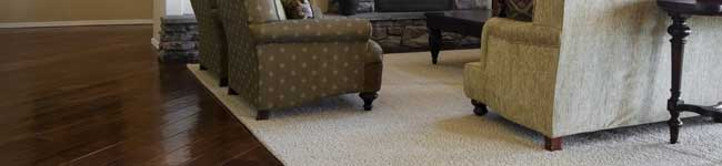 Area Rug Cleaning Services in Ashburn VA