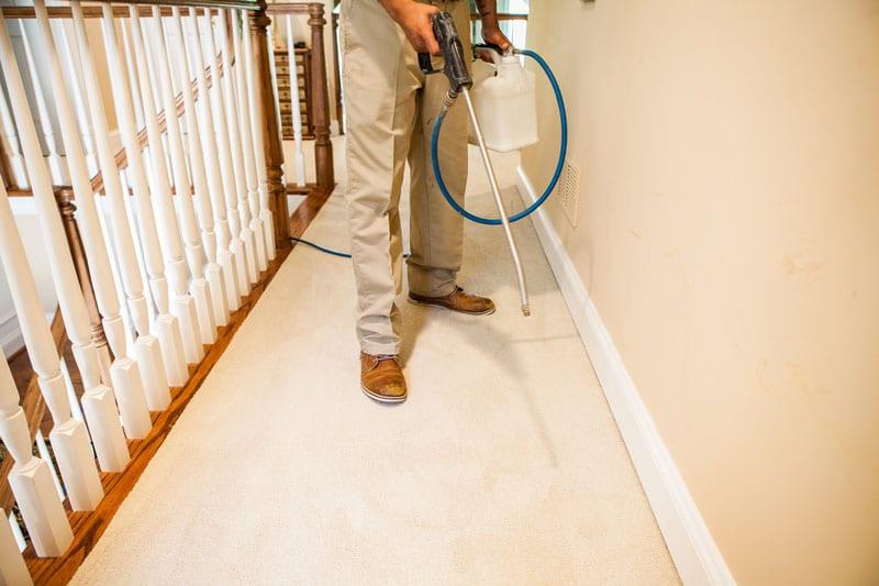 Carpet Keepers Deep Carpet Cleaning in Leesburg