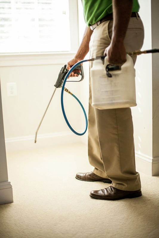 deep carpet cleaning Leesburg VA