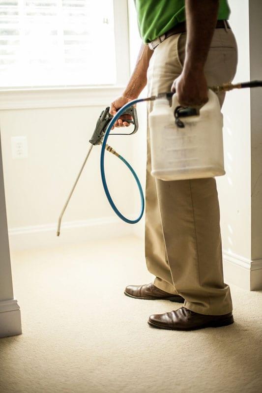 Deep Carpet Cleaning Leesburg Va