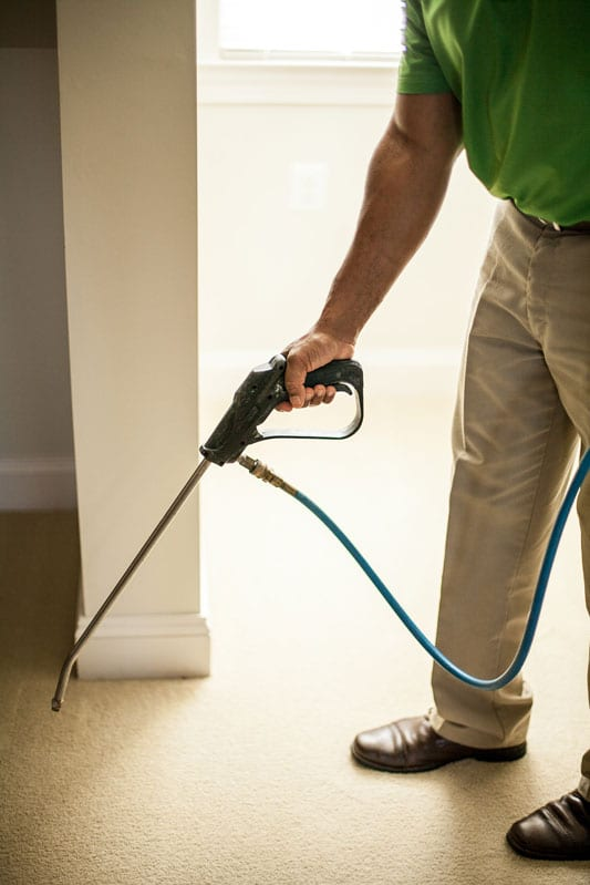 Eco-friendly carpet cleaning Leesburg VA by Carpet Keepers