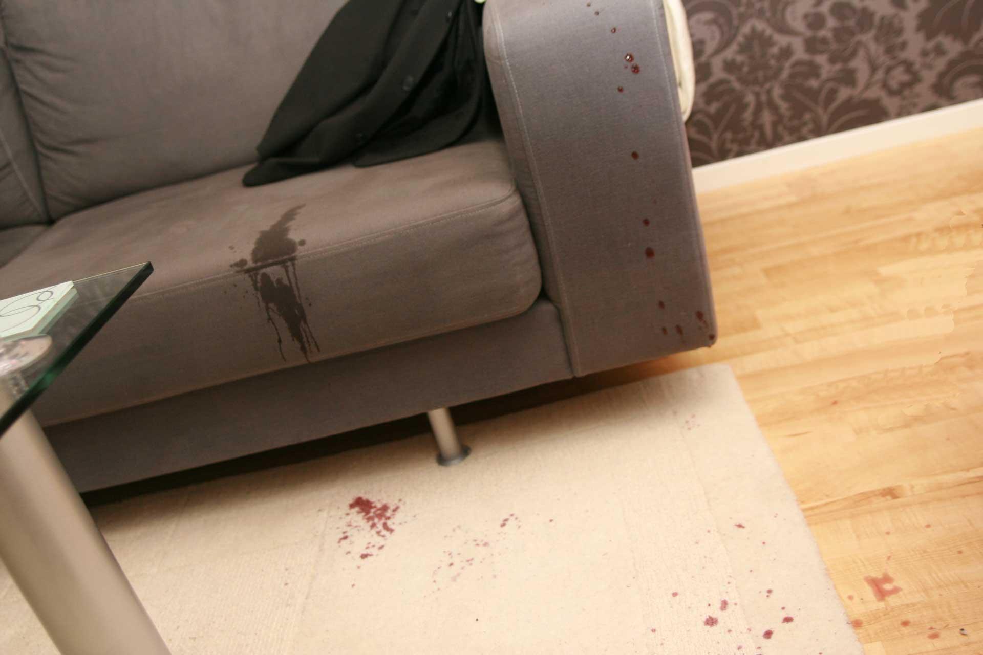 Blog Of Carpet Keepers In Leesburg Virginia